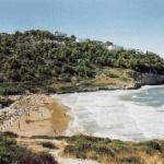 Spiaggia di Procenisco