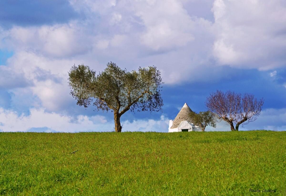 landscape-1307512_1280